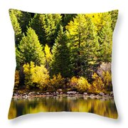Pine Reflection At Georgetown Lake Colorado Throw Pillow