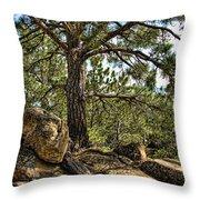 Pine Tree And Rocks Throw Pillow