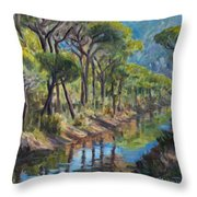 Pine Wood Reflections Throw Pillow