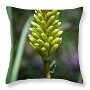 Pineapple Popsicle Throw Pillow