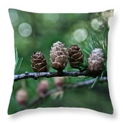 Pinecone Party Line Throw Pillow
