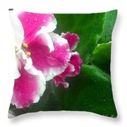 Pink African Violets And Leaves Throw Pillow