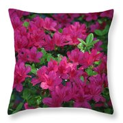 Pink Along The Fence Throw Pillow