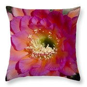 Pink And Orange Cactus Flower Throw Pillow