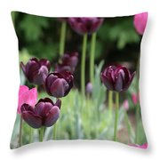 Pink And Purple Tulips Throw Pillow