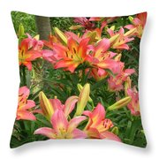 Pink And Yellow Daylilies Throw Pillow