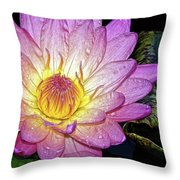 Pink And Yellow Waterlily Throw Pillow