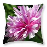 Pink Anemone From The St Brigid Mix Throw Pillow