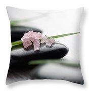 Pink Bath Salt Throw Pillow