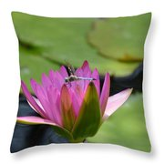 Pink Beaded Wings Throw Pillow