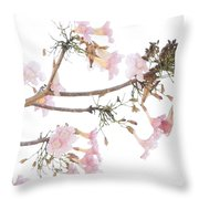 Pink Blossoms In Panama Throw Pillow