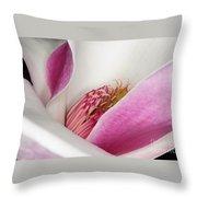 Pink Bursting Color Throw Pillow