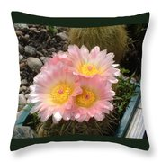 Pink Cactus Throw Pillow