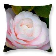 Pink Camellia Flower Throw Pillow