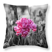 Pink Carnation Throw Pillow by Sumit Mehndiratta