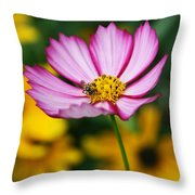 Pink Cosmos Picotee And Bee Throw Pillow