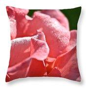Pink Diamond Dust Throw Pillow