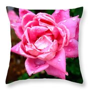 Pink Double Knockout Rose Throw Pillow