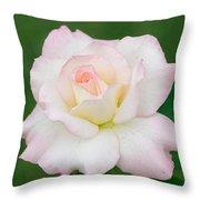 Pink Edge White Rose Throw Pillow