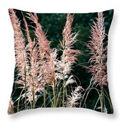 Pink Feathery Reflectors Throw Pillow
