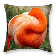 Pink Flamingo Sleep Throw Pillow