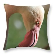Pink Flamingo Throw Pillow
