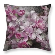 Pink Flowering Crabapple And Grunge Throw Pillow