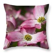 Pink Flowering Dogwood - Cornus Florida Rubra Throw Pillow
