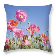 Pink Flowers Against Blue Sky Throw Pillow