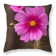 Pink Flowers And Wood  Throw Pillow