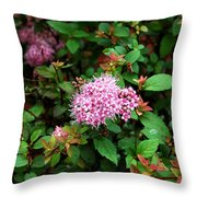 Pink Flowers Of Little Bavaria Throw Pillow