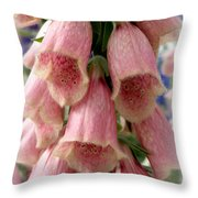 Pink Foxglove Throw Pillow by Lainie Wrightson