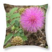 Pink Fuzzball Throw Pillow