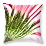 Pink Gerbera 9 Throw Pillow