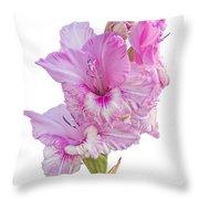 Pink Gladiolus Throw Pillow