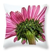 Pink Heaven Throw Pillow