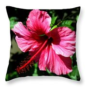 Pink Hibiscus2 Throw Pillow