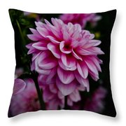 Pink II Throw Pillow