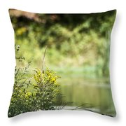 Pink In The Distance Throw Pillow