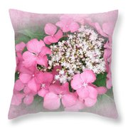 Pink Lace Cap Hydrangea Flowers Throw Pillow