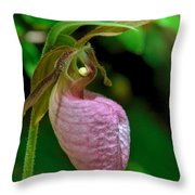 Pink Lady Slipper Orchid Dspf232 Throw Pillow