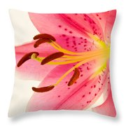 Pink Lily Square Version Throw Pillow