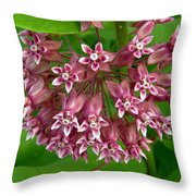 Pink Milkweed Throw Pillow