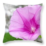 Pink Morning Glory Flower Throw Pillow