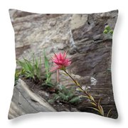 Pink Mountain Flower Throw Pillow