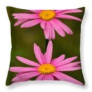 Pink Pair Throw Pillow