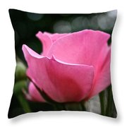 Pink Pearl Throw Pillow