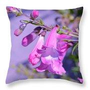 pink Penstemon  Throw Pillow