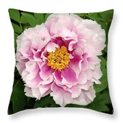 Pink Peony Flowers Series 1 Throw Pillow