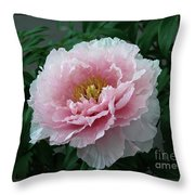 Pink Peony Flowers Series 2 Throw Pillow
